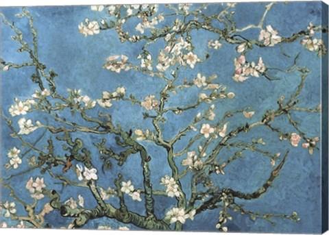 Framed Almond Blossom, 1890 Print